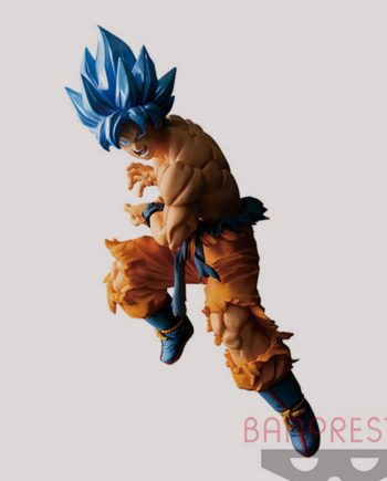 Son Goku SSGSS - Tag Fighters